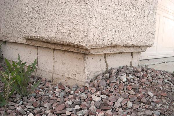Termite Tubes on Exterior